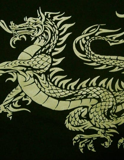Heraldic Celtic Dragon Ladies V-Neck by Maxine Miller ©celticjackalope.com
