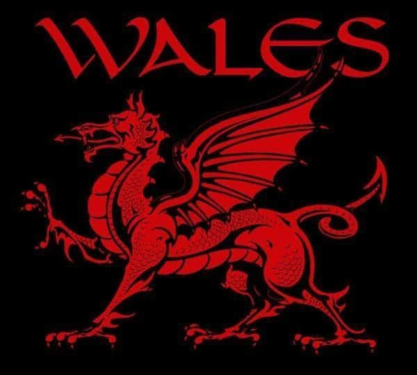 Welsh Dragon WALES T-shirt Y Ddraig Goch by Maxine Miller ©celticjackalope.com