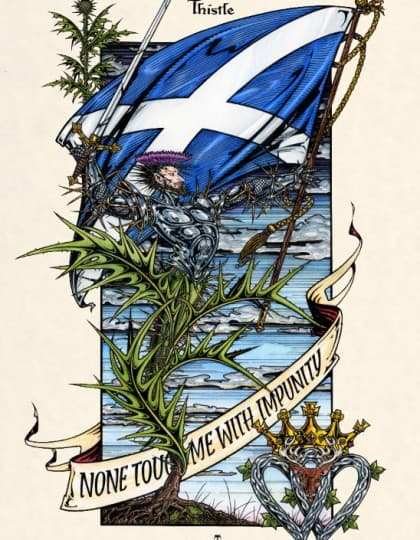 Scottish Thistle - Full Color Magical Botanicals Giclee Art Print by Maxine Miller